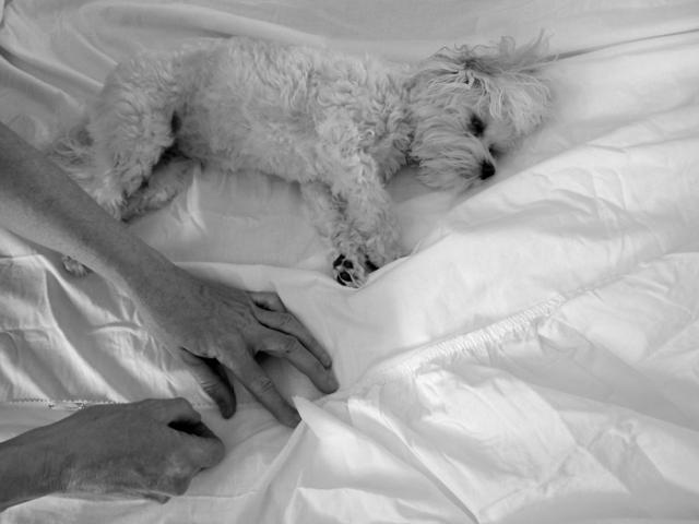 diy bedskirt 5