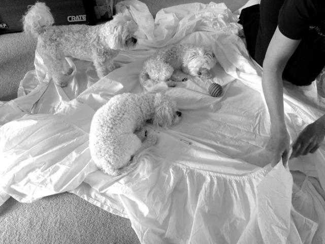 diy bedskirt 6