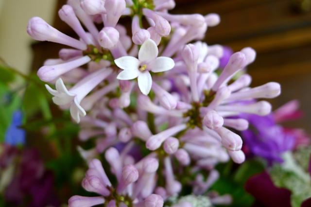 flowershop11