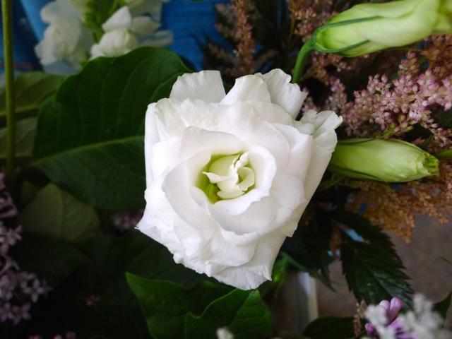 flowershop4
