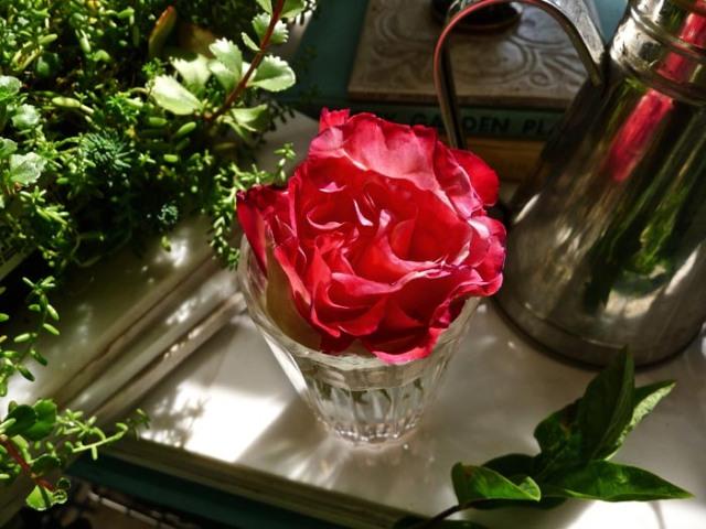 fridaysflowers3